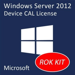 Opt Lenovo Sw 0c19601 Microsoft Windows Server 2012 Client Access License (1 Device)  Fino:31/12