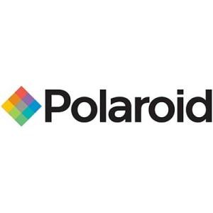 Batterie Alkalina Torcia D Lr20 Polaroid 711-813394 Blister Da 2 Pz. 4250175813394
