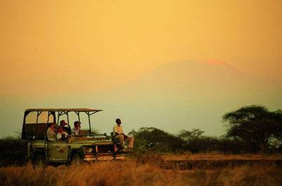 Il paese ideale per il safari è il Kenya