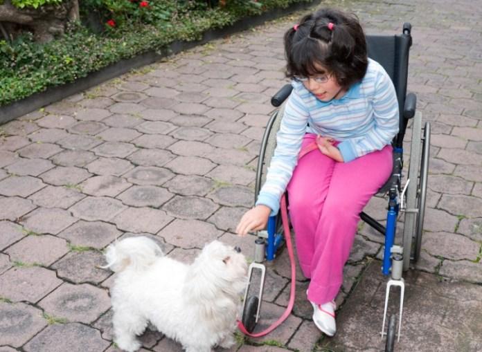 Bisogni speciali amici speciali come gli animali domestici aiutano i