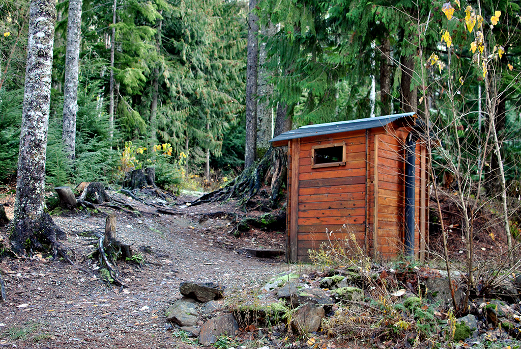 Cedar outhouse in the forest