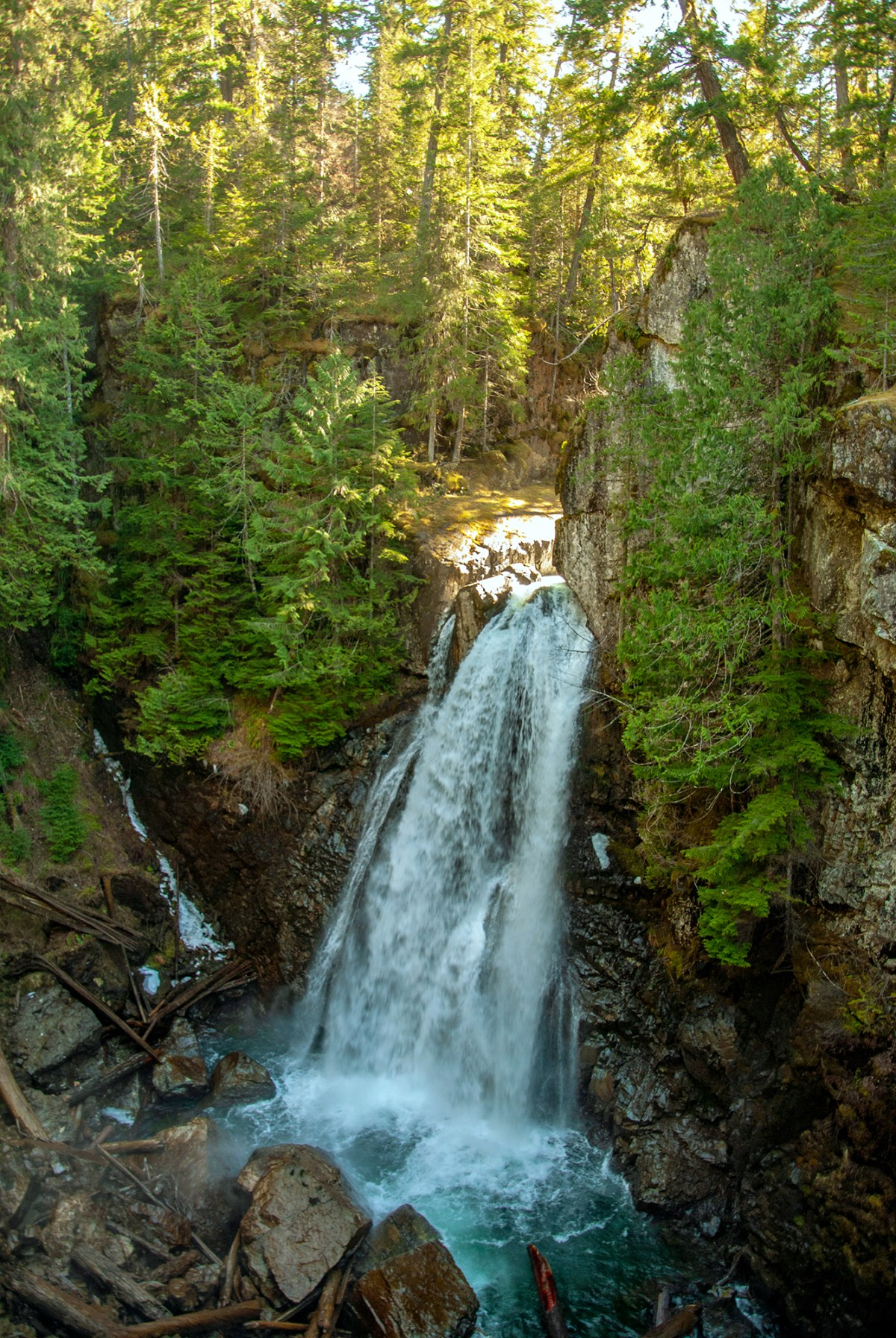 Generic Van Life - The Ultimate Vancouver Island Road Trip - Strathcona Park Lady Falls