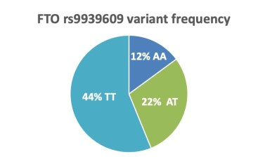 FTO variant frequency is 12% for two copies of BMI increasing allele