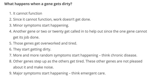 screenshot of dirty genes explanation from Dr. Lynch's website