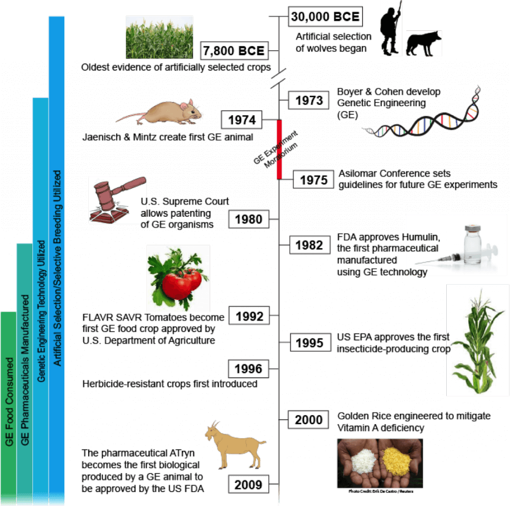 The History Of Gmos