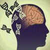Understanding schizophrenia: Genetic research offers hope for treatment