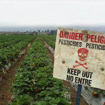 """Résultat de recherche d'images pour """"agriculture pesticides"""""""