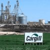 Is Cargill supporting 'removal of GMOs from planet' by partnering with Non-GMO Project?