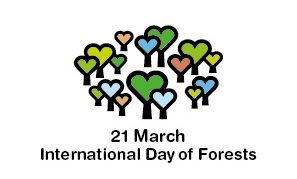 While some countries, such as the united kingdom, india and canada, also celebrate their versions of the holiday on then, others do not. International Day Of Forests Geneva Environment Network