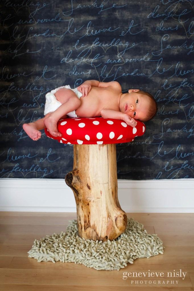 fynn-015-newborn-ohio-portrait-photographer-genevieve-nisly-photography