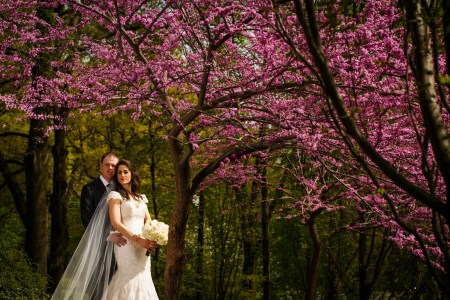 Bride and groom embracing under a cherry blossom tree at the Cleveland Cultural Gardens on their wedding day.
