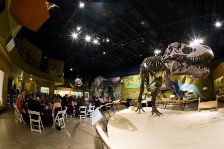 a photo taken in the lower corner of a room at the Museum of Natural History where wedding reception guests are sitting at round tables in white chairs in the left side of the photo while a dinosaur bones display of a T-Rex is on a stage in the right of the photo.