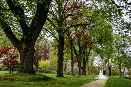 A bride in her billowy white gown with a long sheer veil stands with her groom in a black tuxedo on a gravel path surrounded by green grass and under tall trees that have both green and red foliage with tiny yellow fallen petals at the Canton Garden Center.