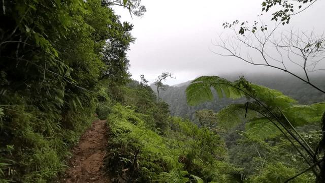 Nusa Penida Dan Flores Di Indonesia Kombinasi Terbaik Untuk Yang Sukakan Alam Semulajadi 7