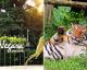 Jom Sumbang Untuk Haiwan DI Zoo Negara. Mereka Juga Memerlukan Di Saat PKP Ini 11