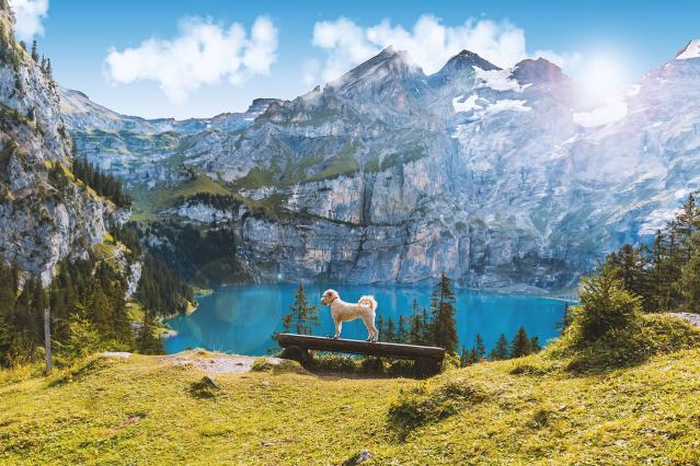 Musim Melawat Dan Tempat Menarik Di Switzerland. Peminat Nature Pasti Suka! 4