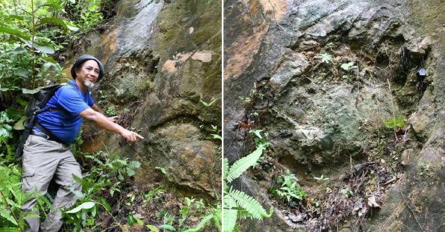 Bekas Tapak Kaki Dinosour Ditemui Di Kelantan
