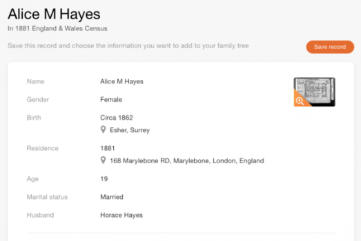 alicehayes1881census