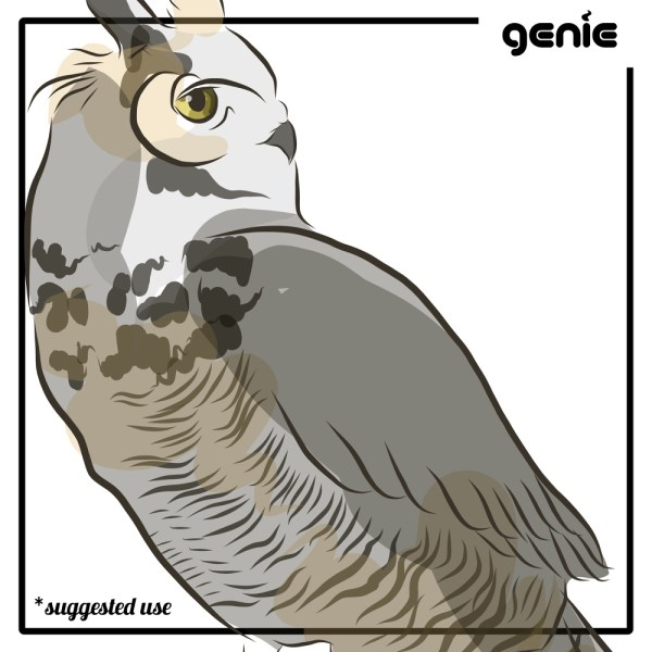 Great Horned Owl Bird Vector Graphic Illustration Hand Drawn Drawing Sketch - Royalty Free Digital Instant Download PDF SVG PNG