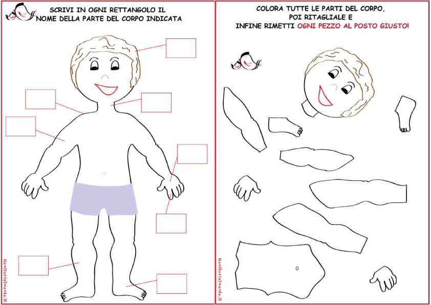 Bien connu insegnare le parti del corpo umano | Genitorialmente BT87