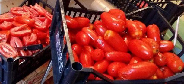 Genitorialmente | Come fare la conserva di pomodoro in casa