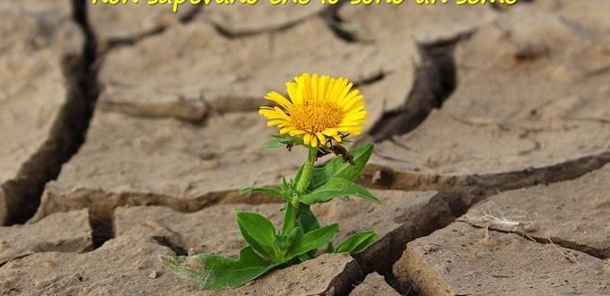 Genitorialmente | Resilienza come svilupparla