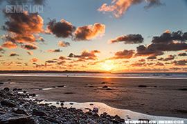 SEO Cornwall from Genius Loci
