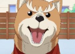 Oda Cinnamon Nobunaga: Primeiras Impressões