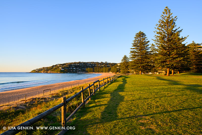 Manly Iphone Wallpaper Early Morning At Palm Beach Print Photos Fine Art