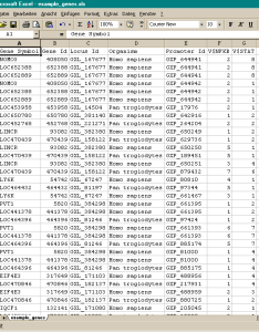 Excel readable file with promoter gene information also   large scale rh genomatix
