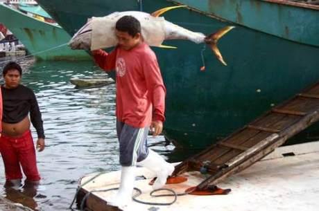 Gensan Fishport