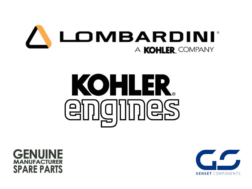 Filtro de Aire Kohler Lombardini ED0021751650-S