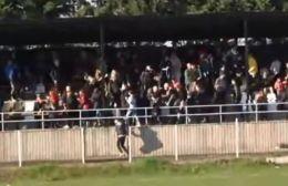 Σκληρές εικόνες: Ασύλληπτο ξύλο μεταξύ οπαδών σε ελληνικό γήπεδο