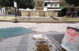 Πρωτοβουλία να σιτίζει τα αδέσποτα από τον Δήμο Ηρακλείου