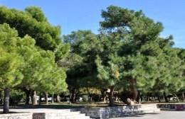 Ζευγάρι στον Βόλο έσπασε την απαγόρευση και πιάστηκε γυμνό σε πάρκο της παραλίας