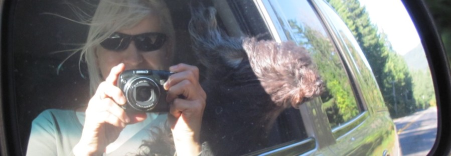 Me and my dog in the car
