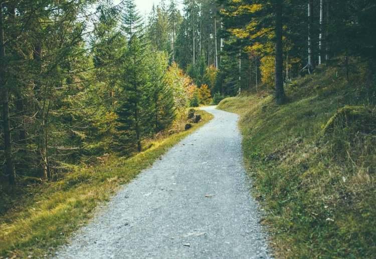 tip 8 get fresh air hiking trail
