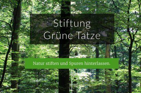 Stiftung Grüne Tatze