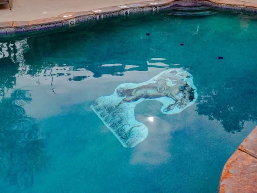 Cowboy in a pool