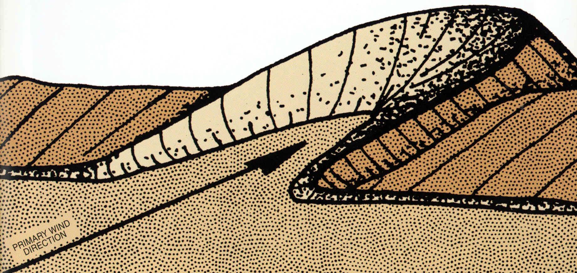 types of sand dunes diagram ford cd player wiring star shape pattern shapes elsavadorla
