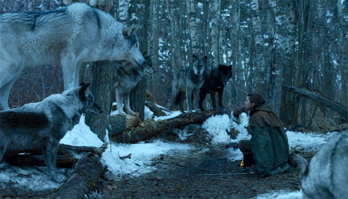 Game of Thrones Direwolf Nymeria and Arya