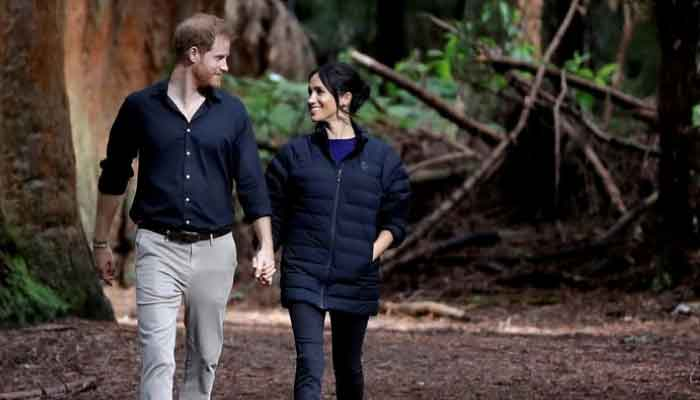 353790 461073 updates Meghan Markle gives birth to a baby girl