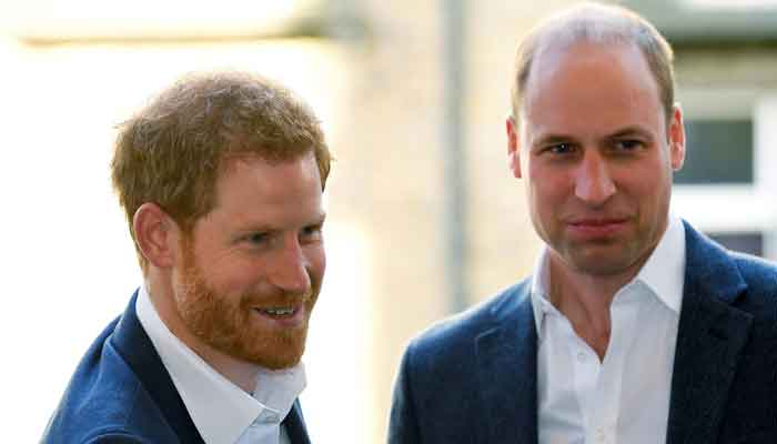 Prince Harry trying to undermine Prince Williams importance, claims Royal expert