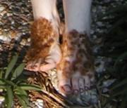 hobbit hair ears feet