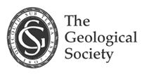 Advances in Geological/Geotechnical Data Handling