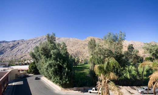 view-off-the-balcony-palm-springs.jpg