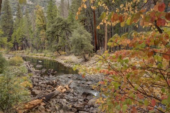 Yosemite Fall Colors River View-w1920-h1400