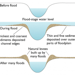 Levee Cross Section Diagram 1989 Yamaha G2 Wiring River Features Geo For Cxc Natural Levees Are Formed As A Result Of Many Floods Depositing Sediment On The Banks