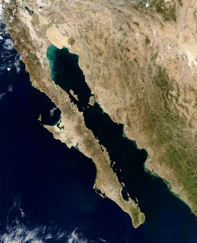 Baja Peninsula in Mexico.  The narrow body of water is the gulf of California.  Source: Jacques Descloitres, MODIS Rapid Response Team, NASA/GSFC.