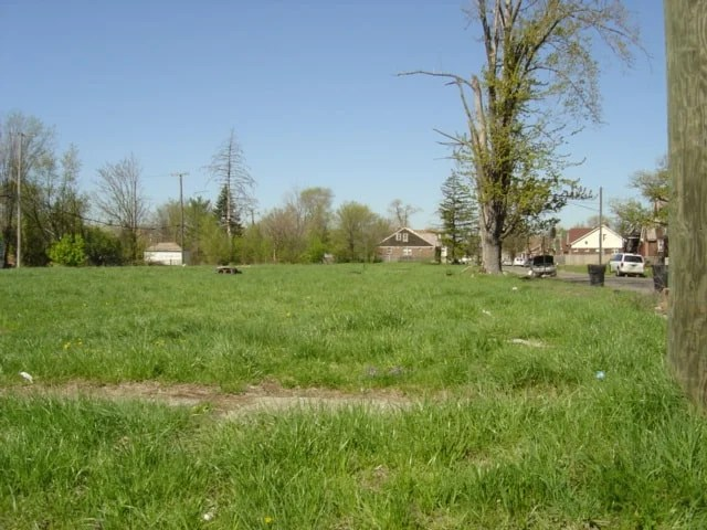 Lot in Detroit converted to an urban prairie. Photo: Jtmichcock, CC BY-SA 3.0, MediaWiki Commons.